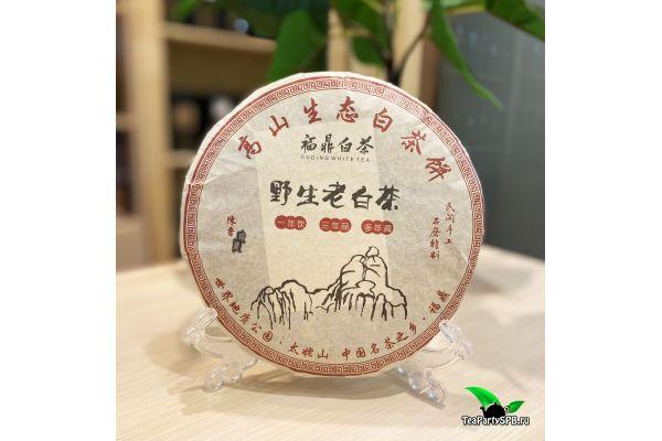 Прессованный белый чай «Шоу Мэй», блин 357г (ф.Юкоу, Фудин), 2015г