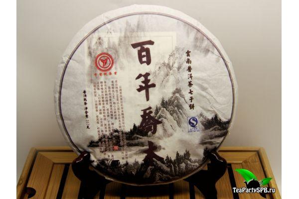 Бай Нянь Цяо Му (Шаньтоу) Шу пуэр, 2009г, 357гр