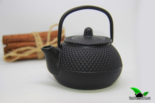 Чугунный чайник Эгоист, 100мл