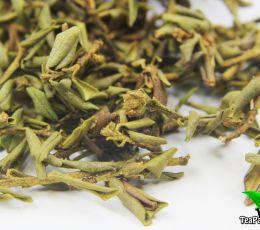 Саган Дайля (Рододендрон Адамса) чай долголетия